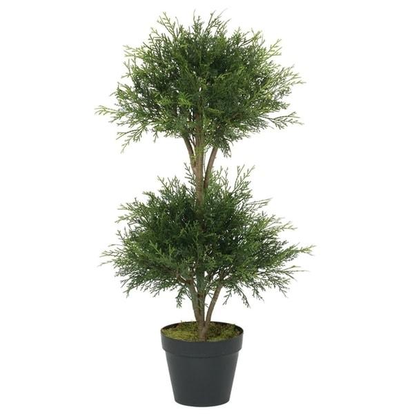 Double Ball Cedar Topiary Tree