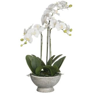 Buy Artificial Plants And Flowers Sullivans Artificial Plants Online