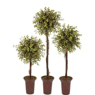 Link to Eucalyptus Topiary Tree Similar Items in Decorative Accessories