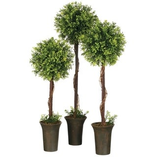 Link to Tealeaf & Berry Topiary Tree Similar Items in Decorative Accessories