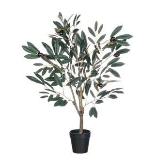 """Potted Olive Tree - green, brown, tan, black - 21""""l x 18""""w x 25""""h"""