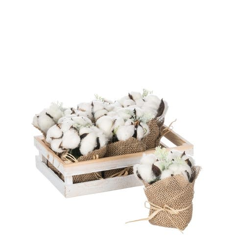 Cotton Tray of 6 Potted Plants