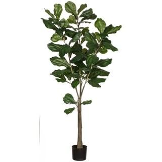 Potted Fiddle Leaf Tree
