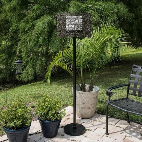 Carbon Loft Beasley Indoor/ Outdoor Bronze 58-inch Floor Lamp