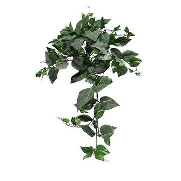 "32"" Frosted Pothos Bush"