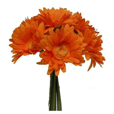 "10"" Tall Gerbera Daisy Bouquet X 9 - Orange"