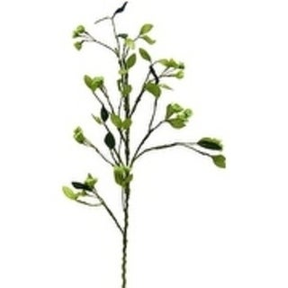 "41"" Branch With Seed Clusters (Set Of 2) - seaform"