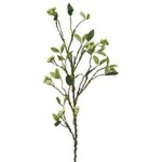 "41"" Branch With Seed Clusters (Set Of 2) - CREAM"