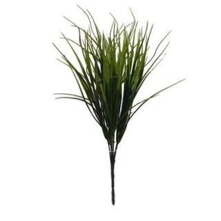 Grass Bundle (Set Of 3) - Green