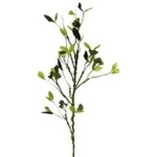 "41"" Branch With Seed Clusters (Set Of 2) - burgundy"