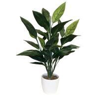 Bird Of Paradise Foliage Floor Plant - Green