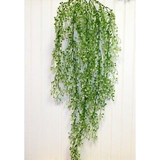 Cascading Hanging Bush With Mini Blooms - Green