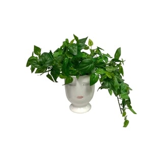 Lush Greenery Celfie - Green