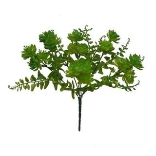 Set Of 2 Echeveria Bush - Green
