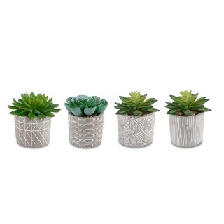 Succ Round Pattern Cement (Set Of 4) - Green