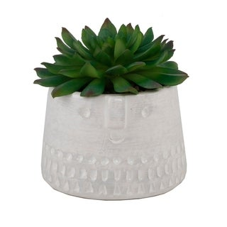 Succulent In Cylinder Cool Face - Green