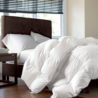 Studio 707 - Microfiber Synthetic Duvet (4 options available)