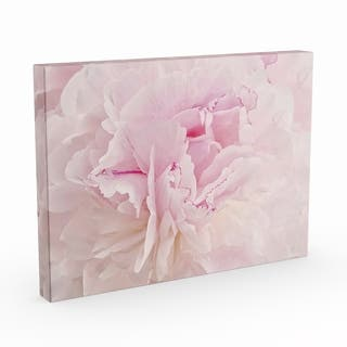 Silver Orchid Cora Niele's 'Peony Macro' Gallery Wrapped Canvas