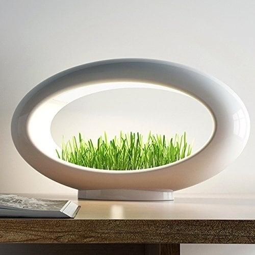 Valsfer Grasslamp Led Lamp Terrarium Minimalist Wheatgrass Not