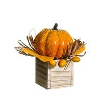 "6.5"" Pumpkin/Rosehip In Wood Box Orange"