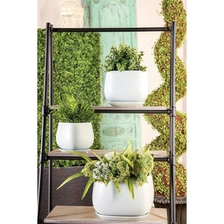 Set of 3 Modern 6, 7, and 8 Inch White Planter with Tray