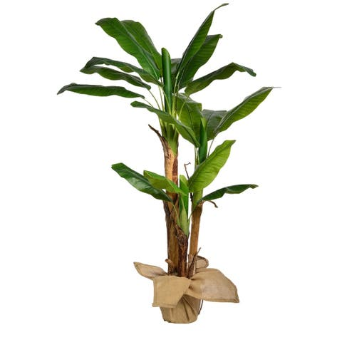 60 Inch High Banana Tree with Burlap Kit - 60""