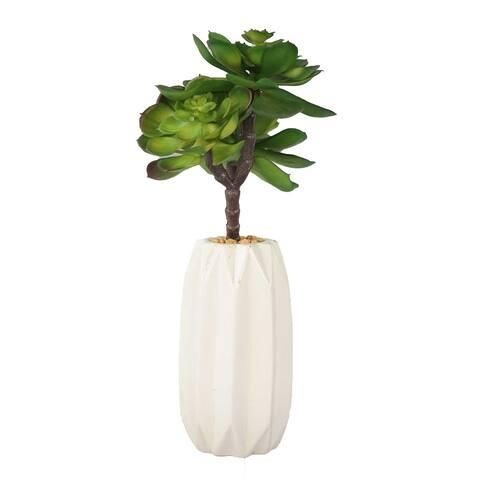"""Succulents in Ceramic Vase/ Matte - 12"""""""