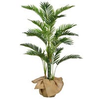 48 Inch High Palm Tree with Burlap Kit