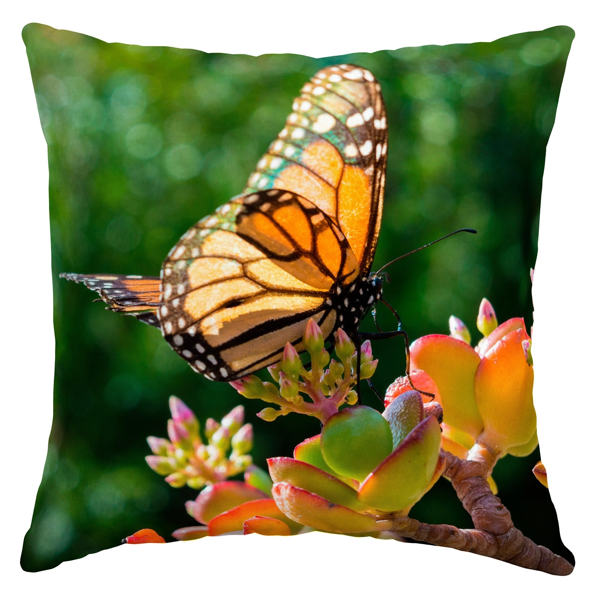 Arden Selections Monarch Butterfly Outdoor Square Pillow Ebay