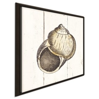 """""""Shell Sketches II Shiplap"""" Giclee Stretched Canvas Wall Art"""