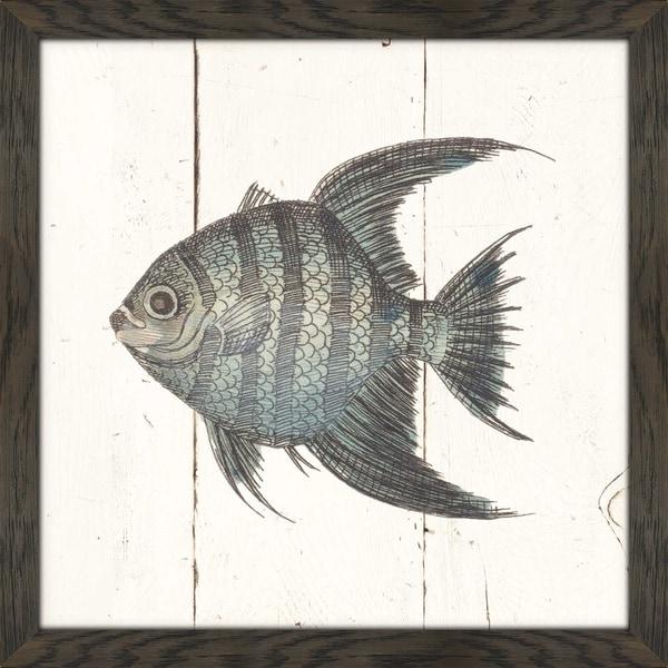 Fish Sketches II Shiplap  Framed Plexiglass Wall Art & Shop