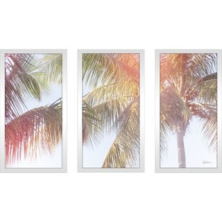 """Sue Schlabach """"Dream Palm III"""" Framed Plexiglass Wall Art Set of 3"""