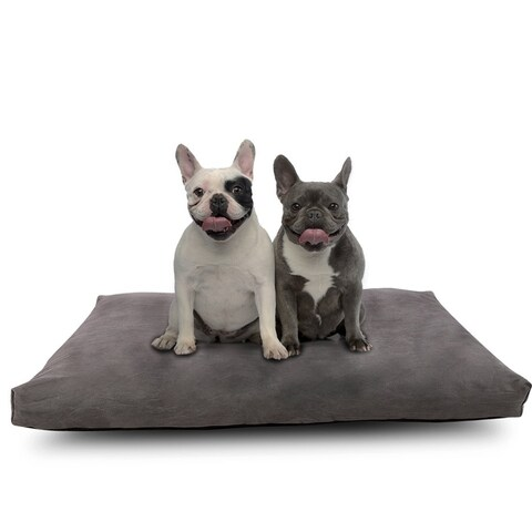 Cr Memory Foam Pet Bed for Large Dogs, Removable Cover, 40 x 26-Inch, Charcoal Gray