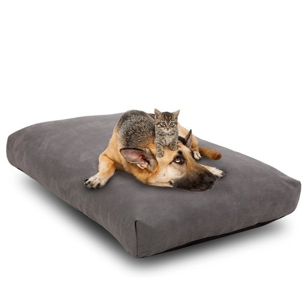 Shop Cr Orthopedic Memory Foam Dog Bed with Waterproof