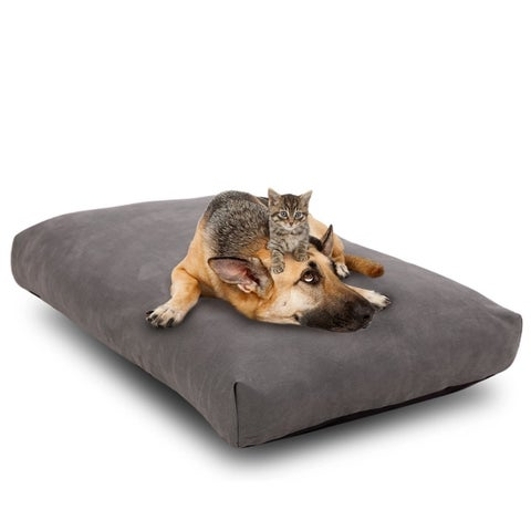 Cr Orthopedic Memory Foam Dog Bed with Waterproof Design, Removable Non-slip Cover, Medium 28x18 inch