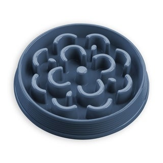 Slow Chow Medallion Medium Feeder Blue