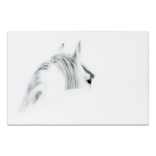 """Empire Art """"Blanco Mare Horse"""" Frameless Free Floating Tempered Art Glass by EAD Art Coop"""