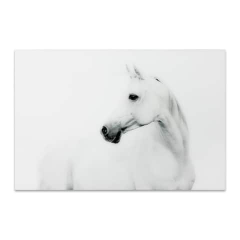 "Empire Art ""Blanco Stallion Horse"" Frameless Free Floating Tempered Art Glass by EAD Art Coop"