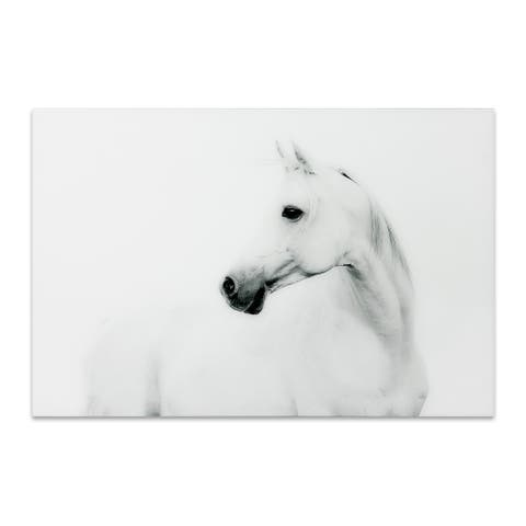 White Horse Graphic Wall Art on Free Floating Tempered Glass Panel