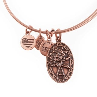 Alex and Ani Because I Love You Friend Charm Bangle