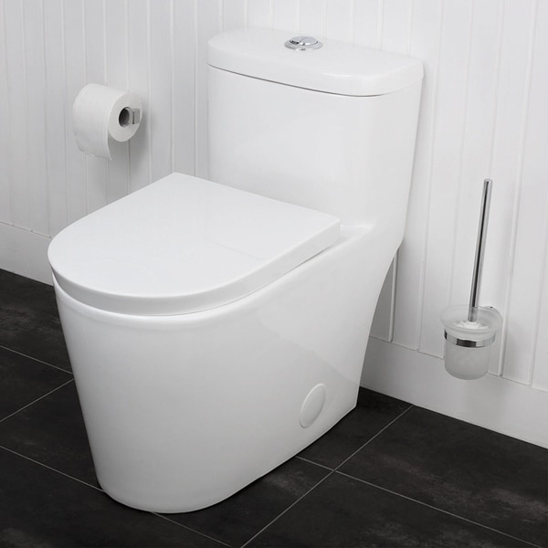 Shop Maykke Menteith One Piece Toilet With Seat Free