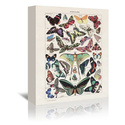 Americanflat 'Papillons Vintage Art Print' Gallery Wrapped Canvas