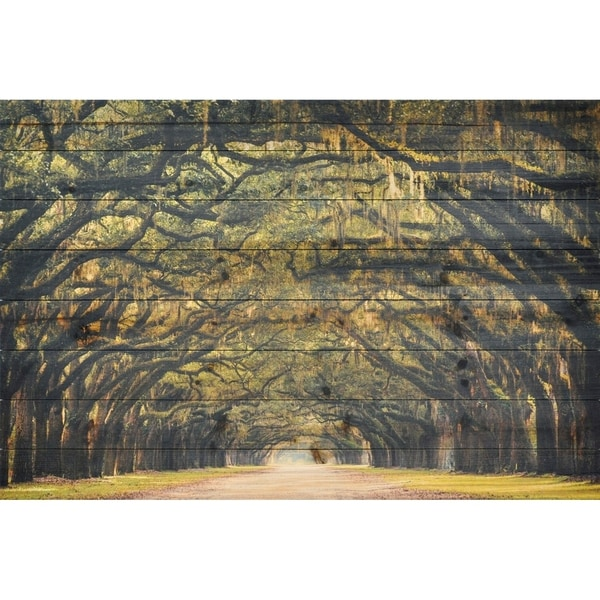 "Empire Art ""Forest Lights"" Fine Art Giclee Printed On Solid Fir Wood Planks"