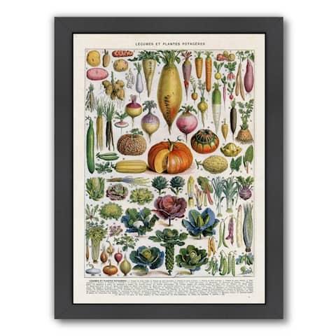 Americanflat 'Legumes Et Plantes Potageres Vintage Art Print' Framed Wall Art