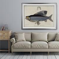 Vintage Fish Study I - Premium Framed Print
