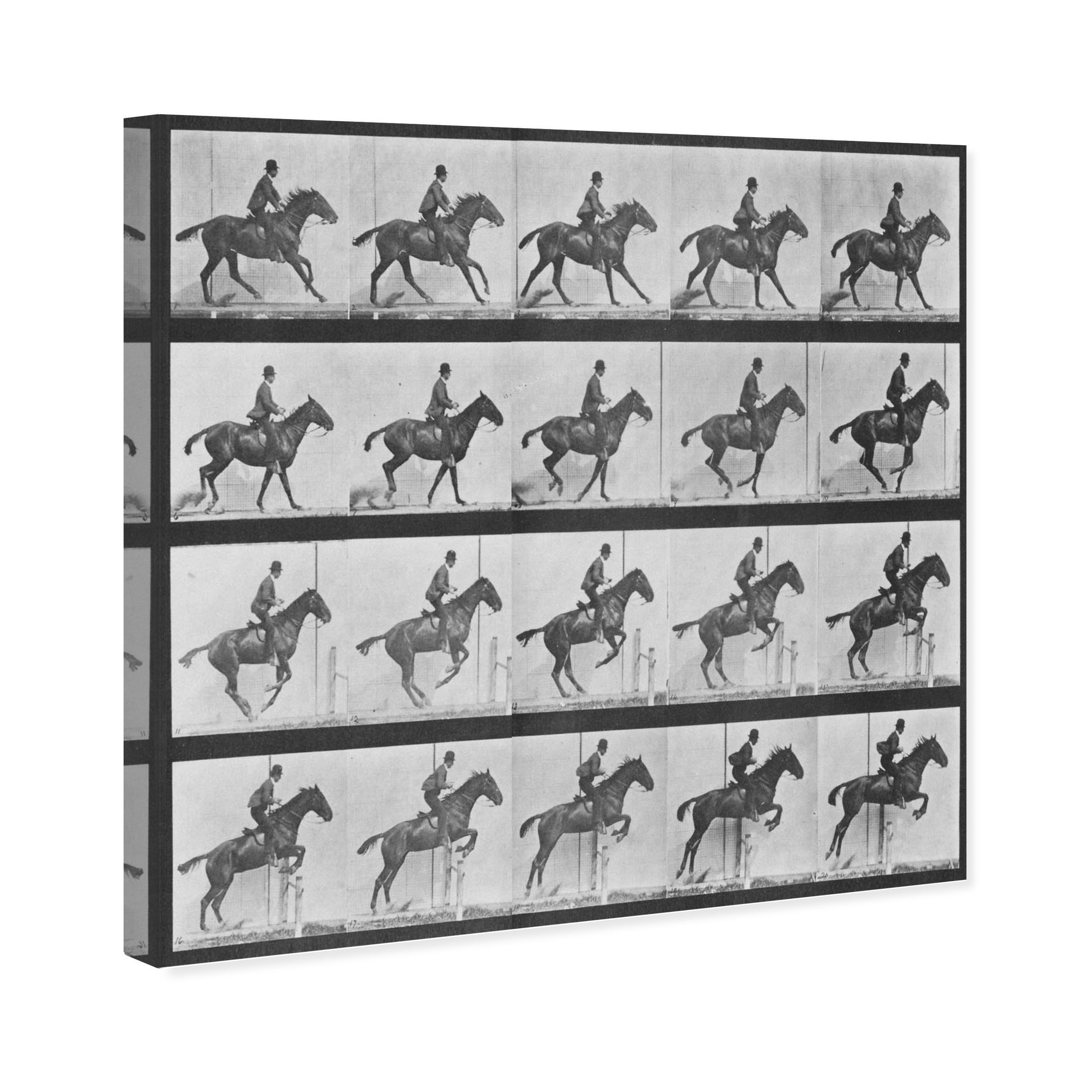 Oliver Gal Stages Of A Jumping Horse Animals Wall Art Canvas Print Black White Overstock 20609601