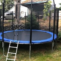 ALEKO 14 Foot Trampoline With Safety Net and Ladder