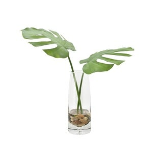 Monstera Leaves in Glass Vase - Green