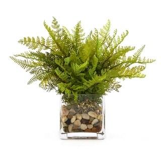 Fern with River Rocks - Green