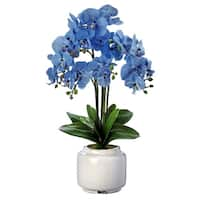 """24"""" Six Bloom Orchid in Vintage Distressed  Lantern Pot"""